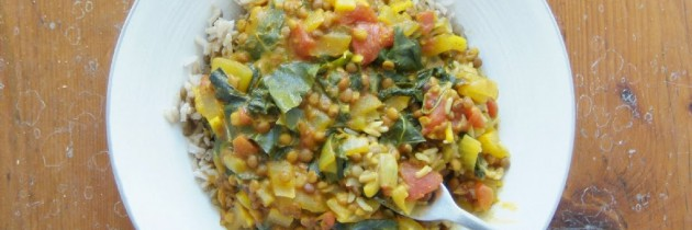 Spinach, lentil and coconut milk curry